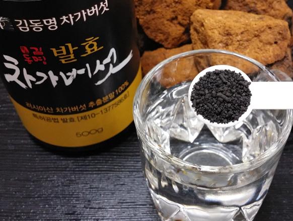 발효차가버섯.jpg
