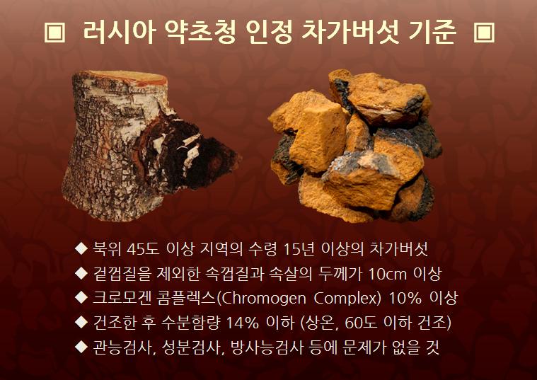 러시아약초청 인정 차가버섯 기준.png